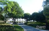 """温州市第三届最美绿道名单出炉 这5条绿道将代表温州""""出战"""""""