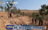 淄博:借力市场搞绿化 乡村旅游促脱贫