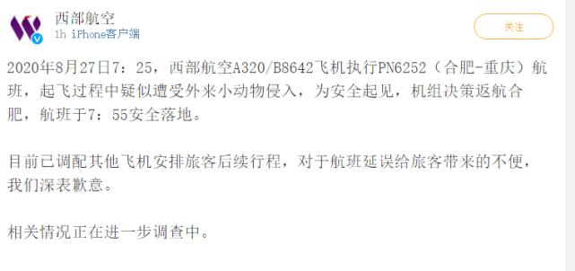 西部航空:合肥至重庆客机起飞过程中疑似遭受外来小动物入侵,已返航落地