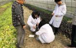 """扬州大学成立国内首家""""土壤医院"""",助力生态农业发展"""