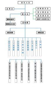 太原双塔刚玉股份有限公司组织机构图