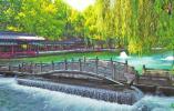 泉水喷涌量与地下水位均创近年新高 百脉泉喷嗨了