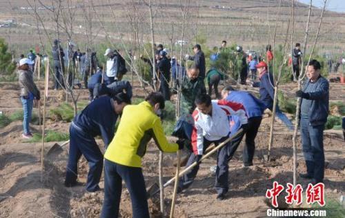 """报告称中国5亿人3年""""手机种树""""实现碳减排792万吨"""