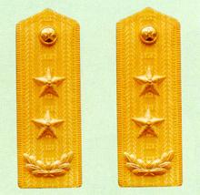 武警中将常服肩章(1988~2007)