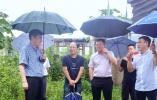 冯金考:争当保障高质量发展的排头兵