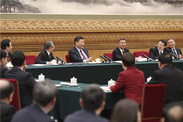 习近平在山东代表团参加审议