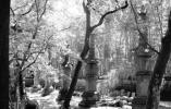 记者探访天童寺:主体建筑安好 修缮工作紧张进行