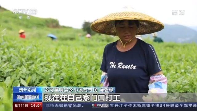 贵州沿河小溪村:抱团发展资源互补 破解增收困境