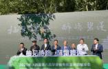 温州永嘉:扎实推进农旅融合发展,助推美丽城镇建设