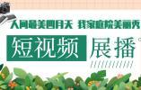 我家庭院美丽秀丨龙湾王珠家:古浦草堂透生机