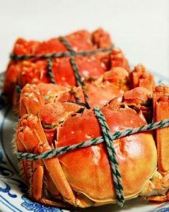 金脚红毛蟹