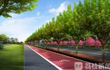 关注!南京江北大道9月17日起开始环境综合整治