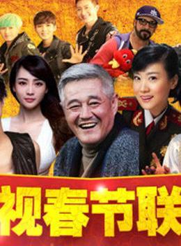 辽宁卫视2013春晚