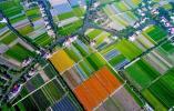 排摸问题加速推进 嘉兴打造全域秀美农村环境