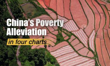 Four charts tell you China's achievements in poverty alleviation