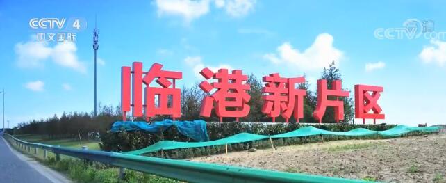 """媒体焦点:中国经济打出更高水平""""组合拳"""""""