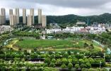 八千平方米大草坪 塑胶跑道 北仑文化公园北侧地块公园投用