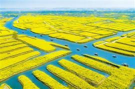 影像志:农业文化遗产保护的有益探索