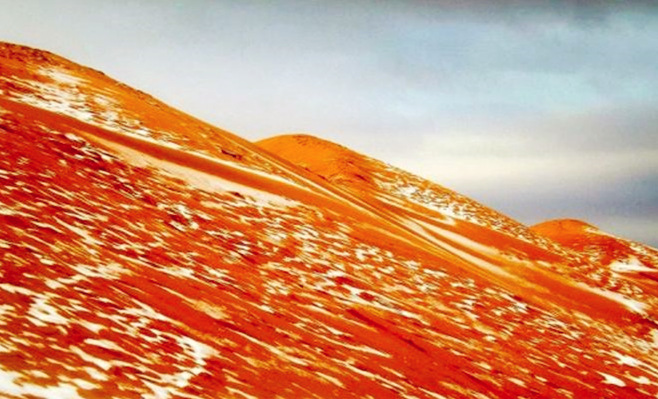 撒哈拉沙漠近40年来首次降雪